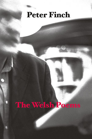 The Welsh Poems - Peter Finch